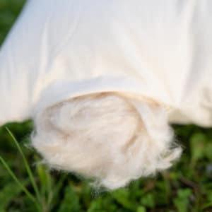 Jastuk od kapoka